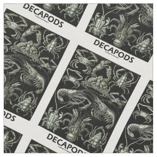 Decápodos Ernesto Haeckel Artforms de la Telas