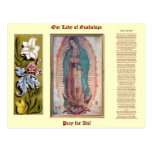 December 12   Our Lady of Guadalupe Postcard