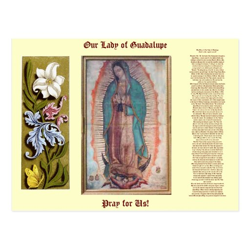 December 12 our lady of guadalupe postcard zazzle for Our lady of guadalupe arts and crafts