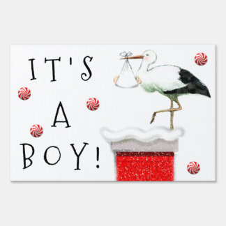 December Baby Announcement Sign