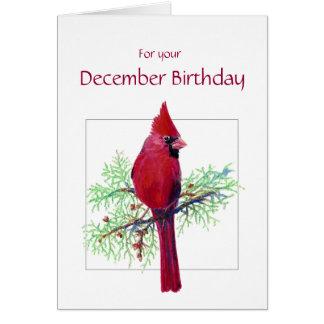December Birthday Cardinal Bird, Nature Greeting Card