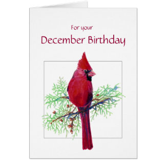 December Birthday Cardinal Bird, Nature Card