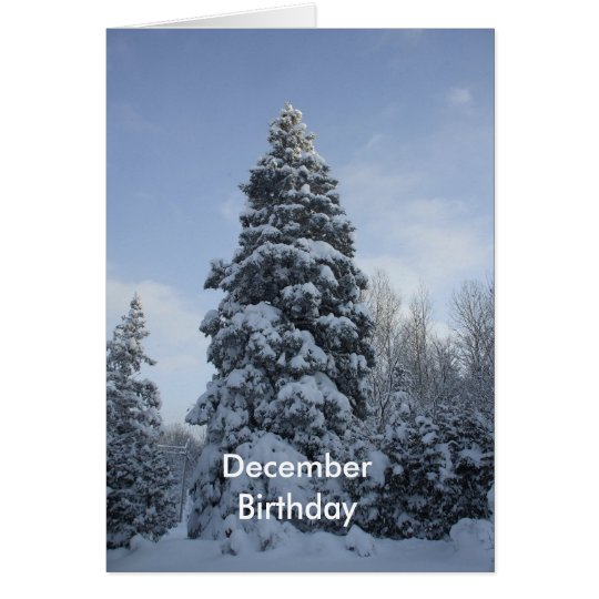 December Birthday-Snow Covered Pines Card