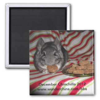 December chinchilla 2012 magnet