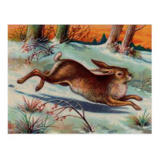 December Rabbit Postcard