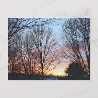December Sky Postcard postcard