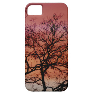 December sunset - covering for iPhone 5 iPhone SE/5/5s Case