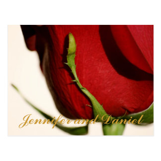 December Wedding Red Rose Announcement Card