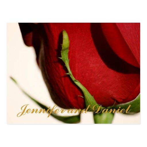 December Wedding Red Rose Announcement Card
