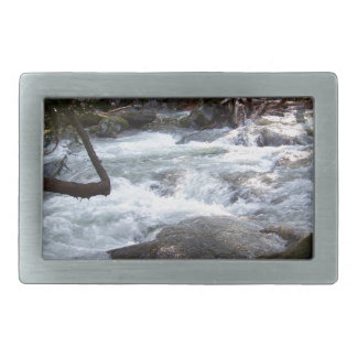 Deception Falls Rectangular Belt Buckle