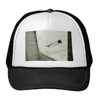 Deception Trucker Hat