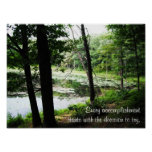 Decide to Try ~ Forest Stream Photo Poster