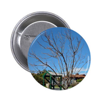 Deciduous tree with single leaf pin
