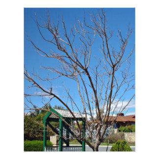 Deciduous tree with single leaf custom flyer