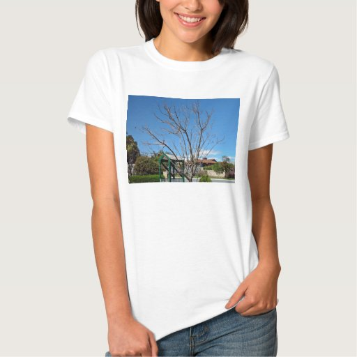 Deciduous tree with single leaf shirt