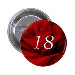 décimo octavo Cumpleaños Pins