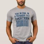 décimotercero AZUL 3 de las rocas del cumpleaños t Camisetas