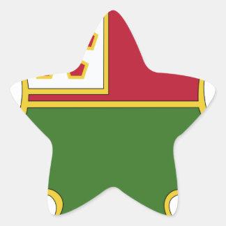 décimotercero Batallón del ingeniero Colcomanias Forma De Estrellas