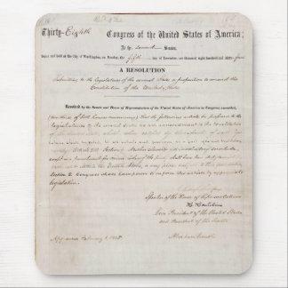 décimotercero Enmienda de la constitución de Estad Tapete De Ratones