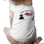 décimotercero Patriotas de la colonia Camisas De Mascota