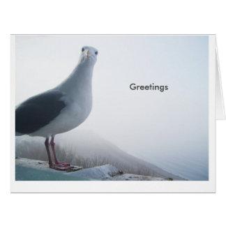 Decir hola tarjeta de felicitación grande