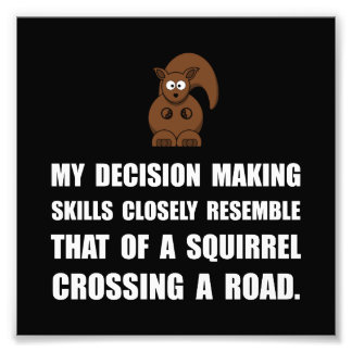 Decision Making Squirrel Photo Print