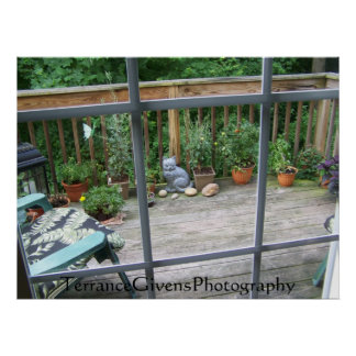 Deck Cat In Window Poster