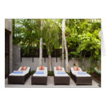 Deck Chairs Tropical House Greeting Cards