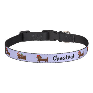 Decked out Dachshunds Dog Collar