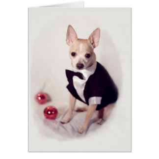 Decked Out Dog Card