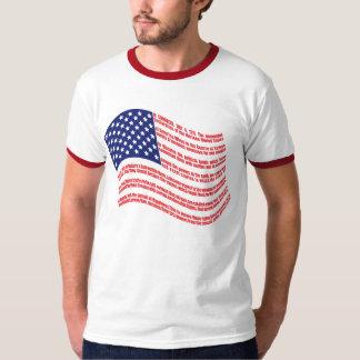 Declaration of Independence Flag Shirt