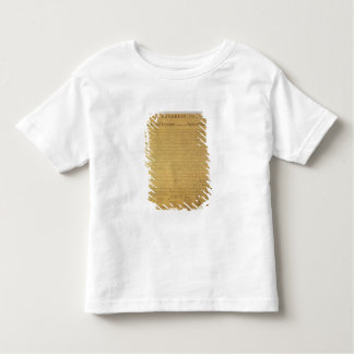 Declaration of Independence Tee Shirt