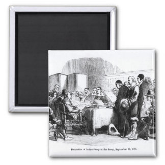 Declaration of Independency Magnet
