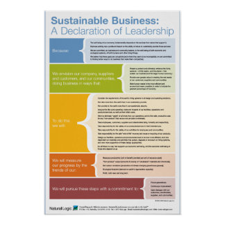 Declaration of Leadership Poster