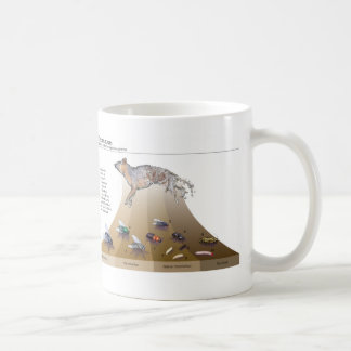 Decomposers Mug