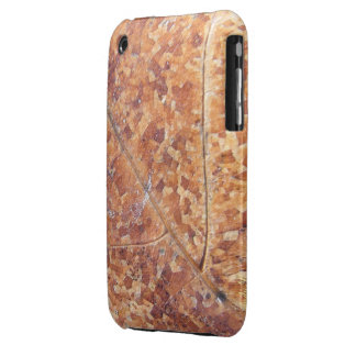 Decomposing Oak Leaf ~ iPhone 3 CaseMate Barely Case-Mate iPhone 3 Cases