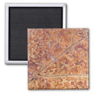 Decomposing Oak Leaf ~ magnet