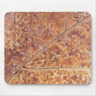 Decomposing Oak Leaf ~ mousepad