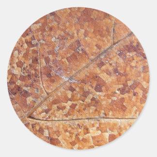 Decomposing Oak Leaf ~ sticker