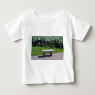 Decompression Session Baby T-Shirt