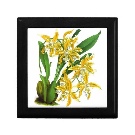 Decoración amarilla de la flor de la orquídea 8 de joyero cuadrado pequeño