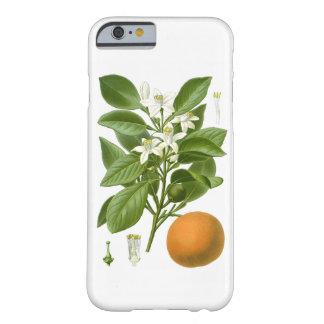 Decoración botánica anaranjada de 2 hogares de los funda para iPhone 6 barely there