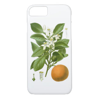 Decoración botánica anaranjada de 2 hogares de los funda iPhone 7