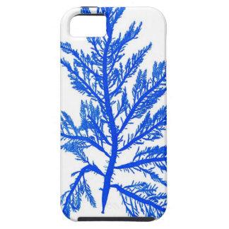 Decoración botánica costera de no. 7 azules de la  iPhone 5 carcasas