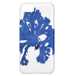 Decoración botánica costera de no. 9 azules de la