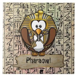 Decoración casera de Pharaowl Azulejo Cuadrado Grande