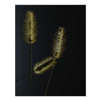 Decoración de la naturaleza de la hierba de cola membrete personalizado