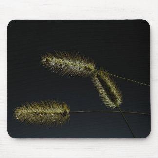 Decoración de la naturaleza de la hierba de cola tapete de ratones