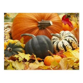 Decoración de octubre postales