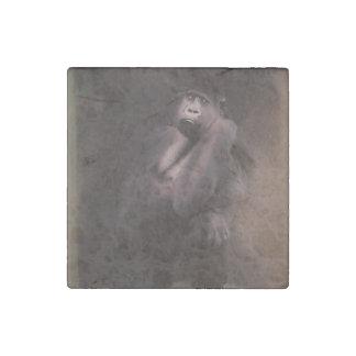 Decoración del arte del gorila imán de piedra